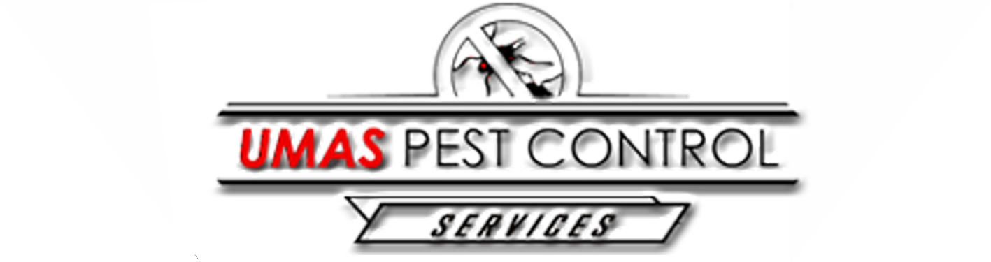 UMAS BALI PEST CONTROL PROFESSIONAL PEST CONTROL, TERMITE CONTROL, RODENT CONTROL IN BALI, BANYUWANGI, LOMBOK, JAKARTA, MEDAN, BANDUNG, SURABAYA | We serve commercial and resident in Bali, Banyuwangi, Lombok, Jakarta, Medan, Surabaya, Bandung, Makassar, with the best methods and efficient budget